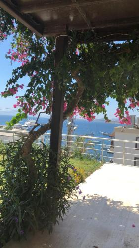 Bodrum City Zambak Garden Apartment with Pool telefon