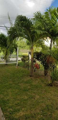 Cynson Villa Holiday Accommodations