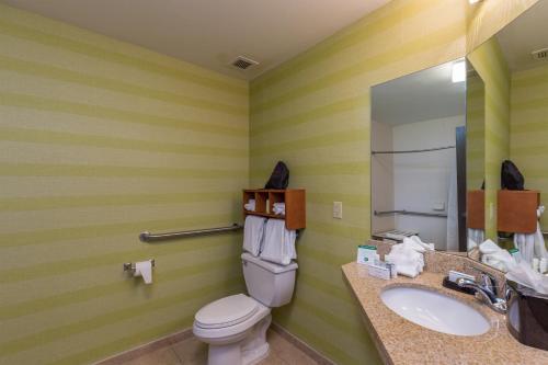 Brandon Center Hotel - Tampa - Tampa, FL 33619