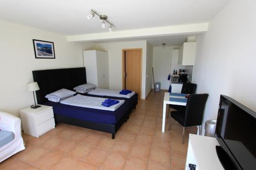 Chalet Mack - Apartment - Brienzwiler