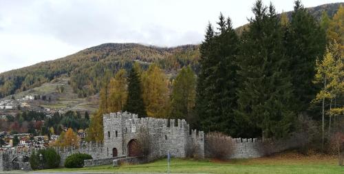 . Un Nido nella Torre del Castello