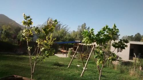 Cabaña Manzano Histórico - Chalet - Los Árboles