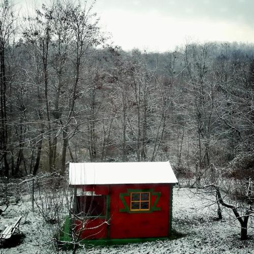 Holiday Home Primrose 룸 사진