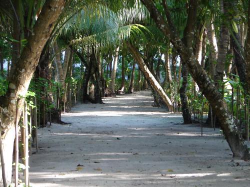 Filitheyo, Filitheyo, 12060, Maldives.