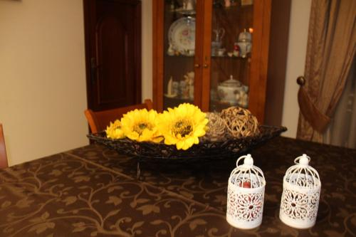 Casa Amarela, Pension in Penacova bei Soutelo