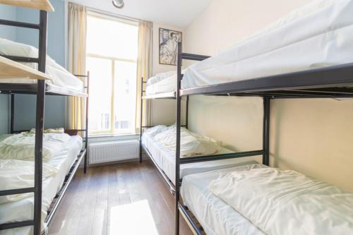 Bunk Bed in 6-Bed Dormitory Room