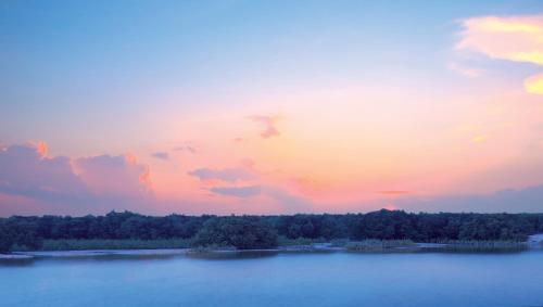 Eastern Mangroves, Abu Dhabi, United Arab Emirates.