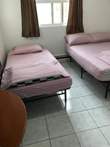 University Apartment Kuva 12