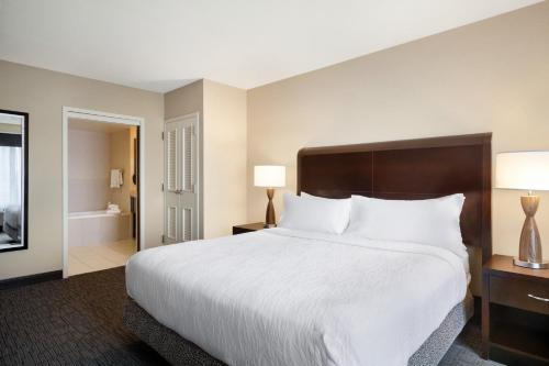 Hilton Garden Inn Atlanta Downtown - Atlanta, GA GA 30313