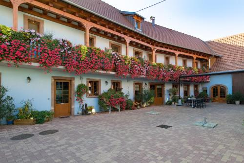 La Ferme de Louise - Accommodation - Hohengoeft