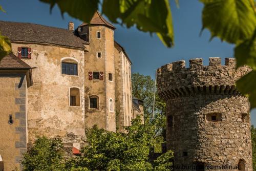 . Burg Plankenstein