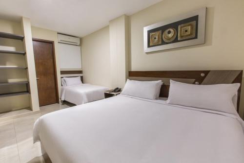 Hotel Mayales Plaza room photos