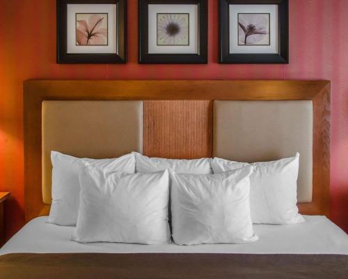 Quality Inn Riverfront - Harrisburg, PA 17104
