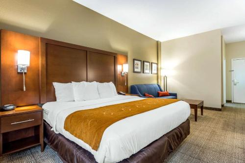 Comfort Suites At the University - Conway, South Carolina
