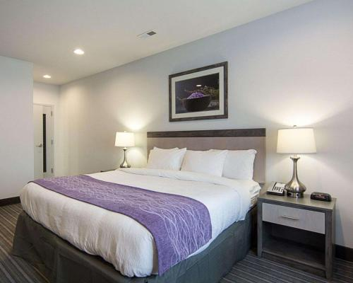 Comfort Inn Williamsburg Gateway Hotel In Va