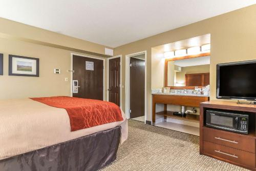 Comfort Inn & Suites Lexington - Lexington, KY 40505