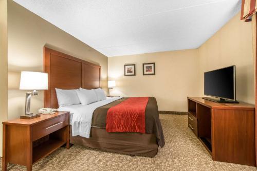 Comfort Inn & Suites - Denver, CO CO 80216