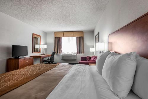 Quality Inn Denver Westminster - Westminster, CO 80030