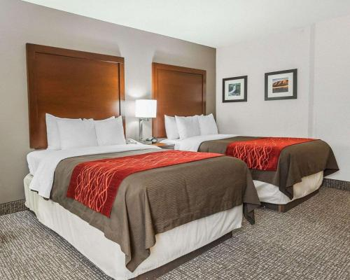 Comfort Inn Denver - Denver, CO 80239