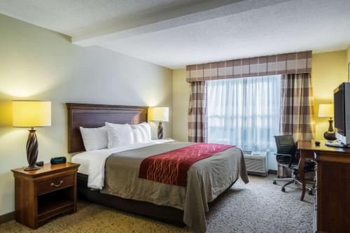 Comfort Inn and Suites Dover - Hotel