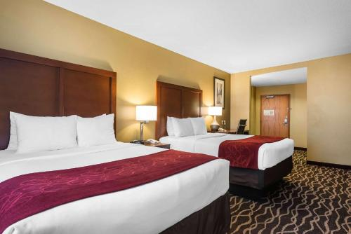 Comfort Suites Tampa Airport North - Tampa, FL 33610