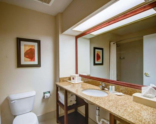 Comfort Suites Gwinnett Medical Center Area