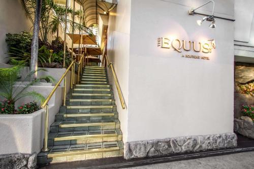 The Equus - Honolulu, HI 96815
