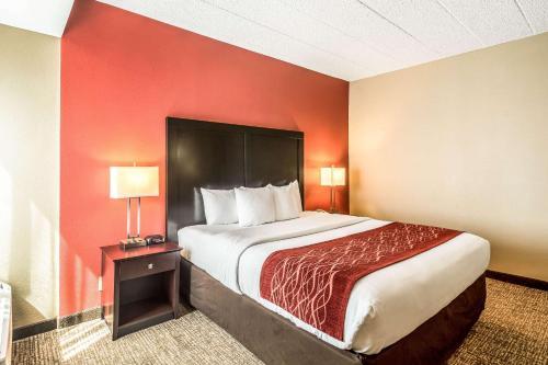 Comfort Inn O'Hare - Convention Center - Des Plaines, IL IL 60018