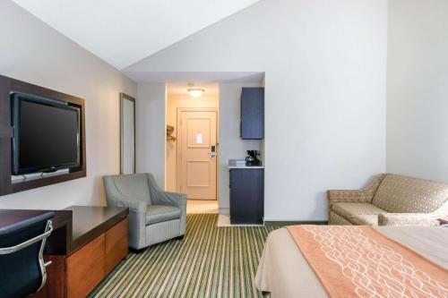 Comfort Inn Plainwell - Hotel