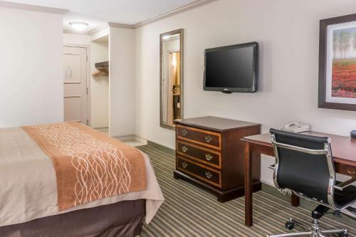 Room #49037009