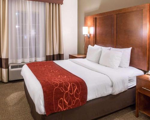 Comfort Suites Hotel Newark - Newark, NJ 07102