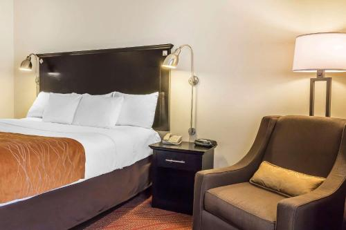 Comfort Inn & Suites LaGuardia Airport - image 6