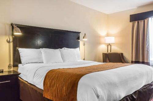 Comfort Inn & Suites LaGuardia Airport - image 8