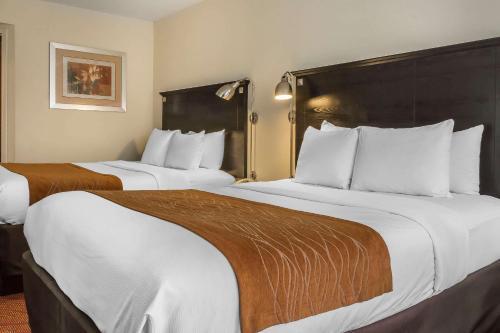 Comfort Inn & Suites LaGuardia Airport - image 4