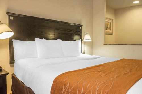 Comfort Inn & Suites LaGuardia Airport - image 10