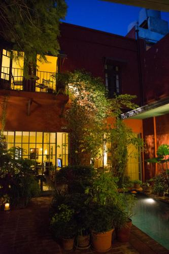 BE Jardin Escondido By Coppola photo 75