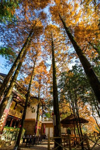 . Wuyi Mountain Ancient Street Forest Living England Time Inn
