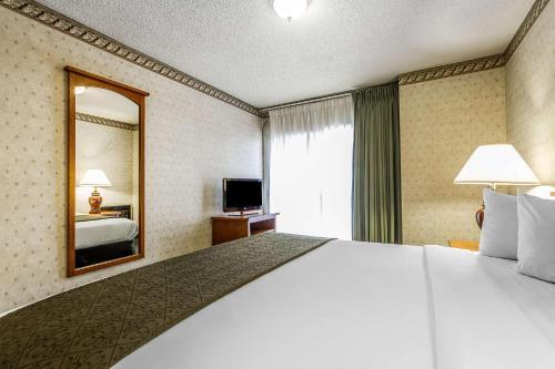 Quality Inn & Suites Santa Clara photo 2