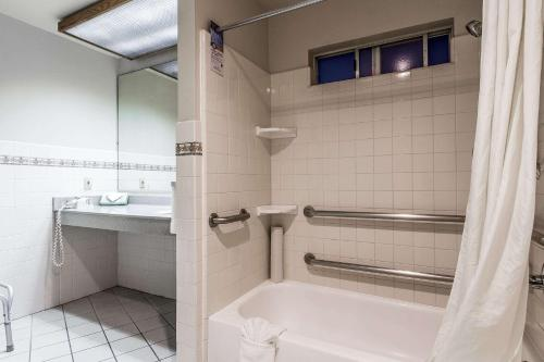 Quality Inn & Suites Santa Clara photo 3