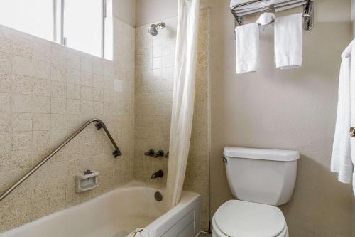 Quality Inn & Suites Santa Clara photo 4