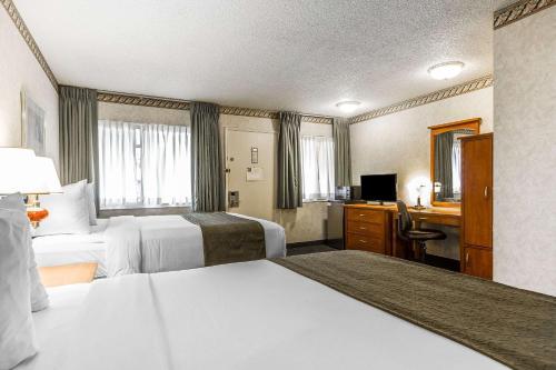 Quality Inn & Suites Santa Clara photo 6