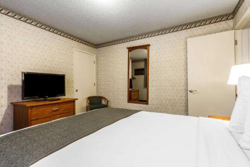 Quality Inn & Suites Santa Clara photo 10