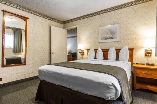 Quality Inn & Suites Santa Clara photo 50
