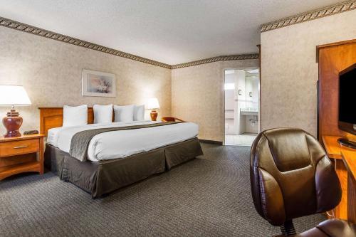 Quality Inn & Suites Santa Clara photo 51