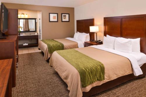 Comfort Inn & Suites Rancho Cordova-sacramento - Rancho Cordova, CA 95742