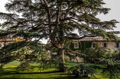Località Pescaia, Sticciano Scalo, Roccastrada (Grosseto), Italy.