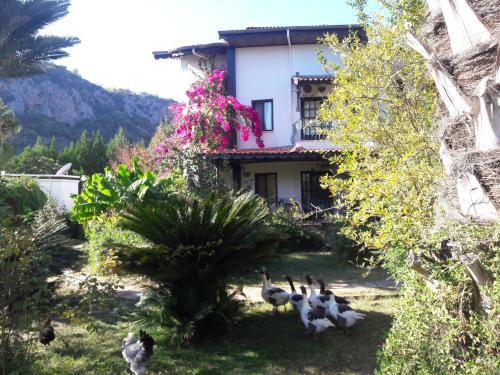Cıralı Anatolia Resort tatil
