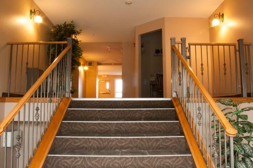 . Misty Mountain Inn & Suites