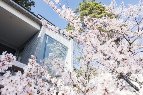 1408 Oishi, Fujikawaguchiko-machi, Minami Tsuru-gun, Yamanashi, Japan.
