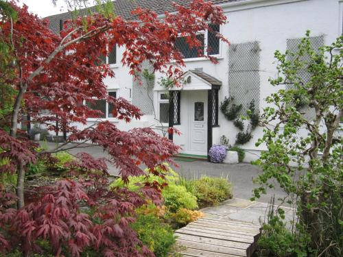 Cwmbach Guest House (B&B)